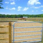 river road horse farm hinckley, OH riding lessons